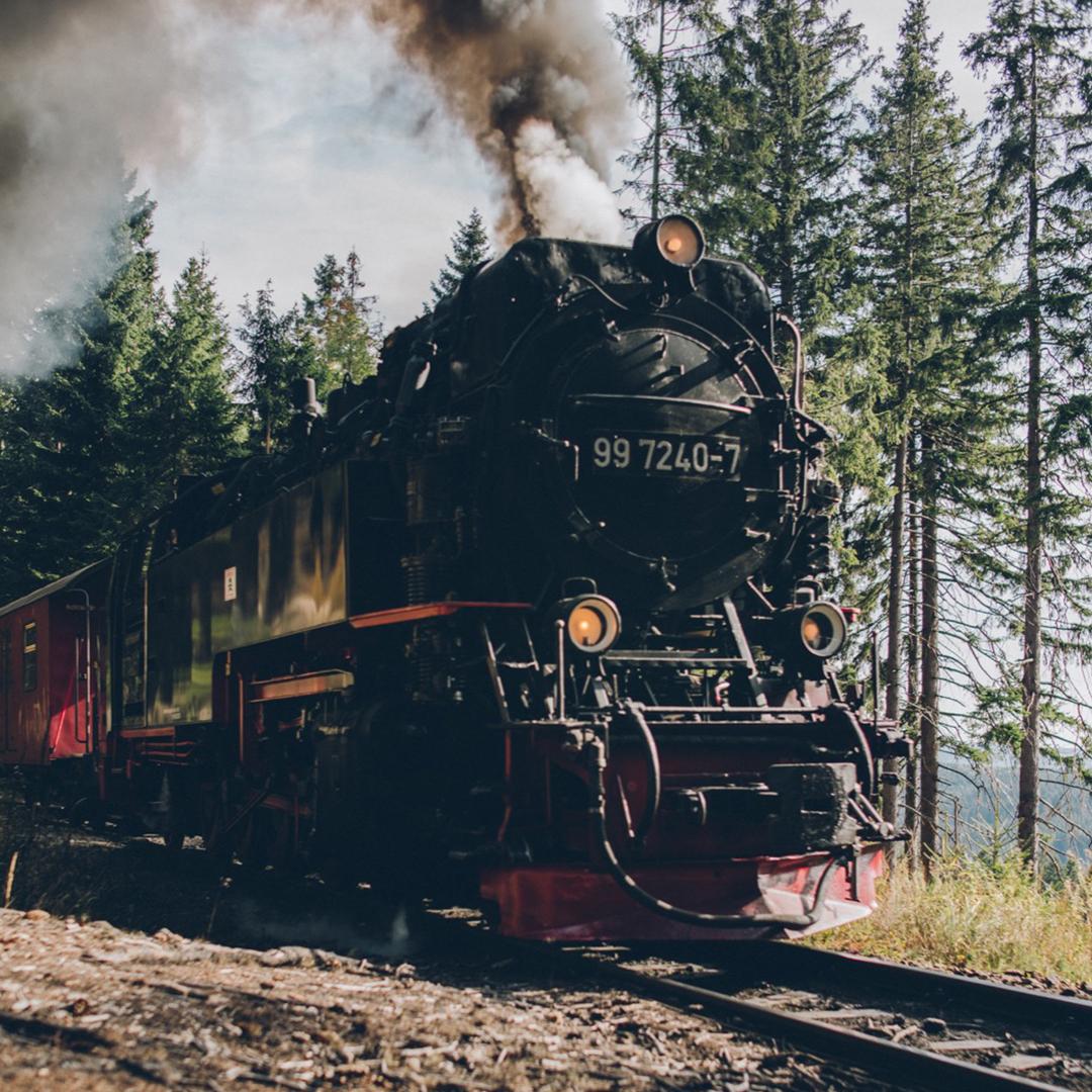 Wandern um Wernigerode (die kleine Metropole im Harz)